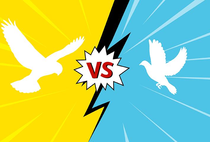 Hawks vs Doves