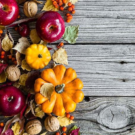 Thanksgiving image.jpeg